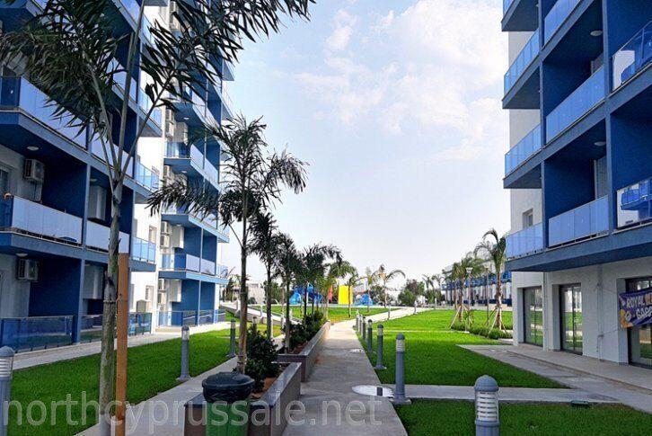 Кипр недвижимость цена недвижимость за рубежом минусы и плюсы и минусы