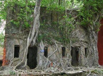 Остров Росс, Андаманские острова, Индия